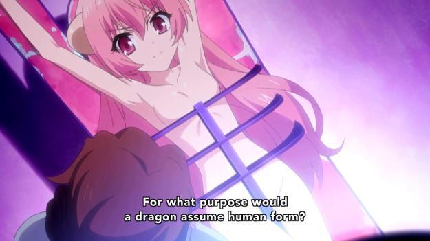 Seikoku no Dragonar - 0216