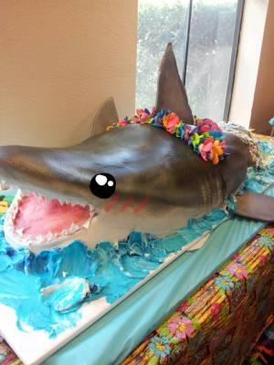 cake shark