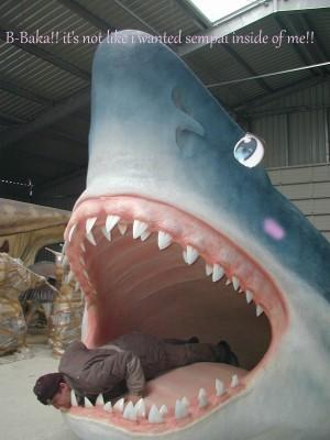 inside shark