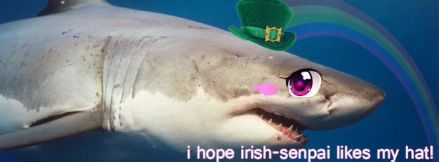 irish shark