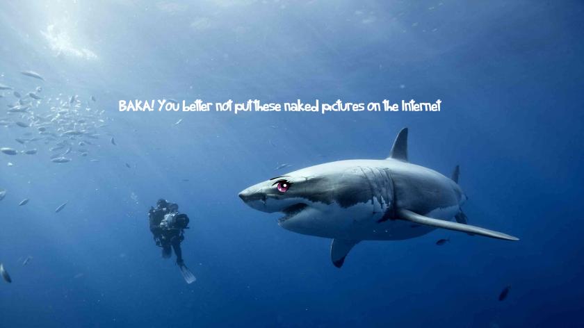 leaked shark pics