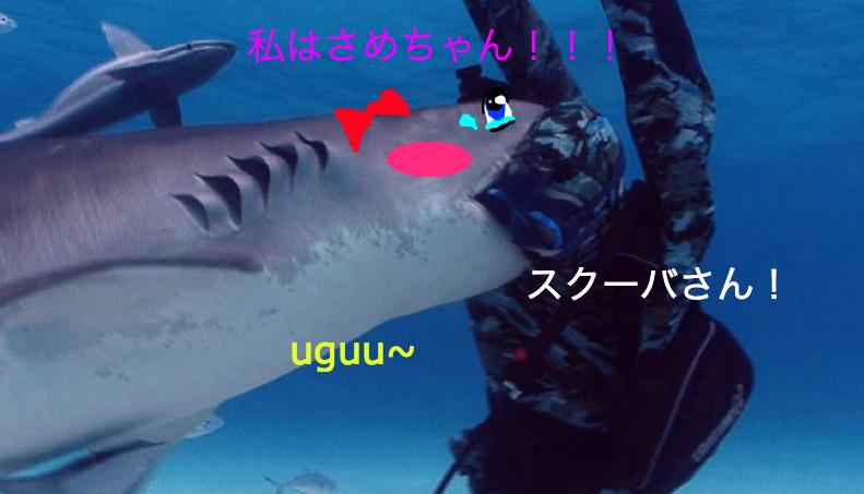 uguu shark