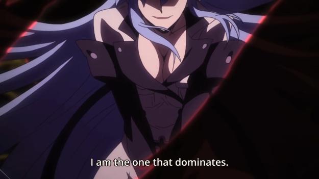Akame ga Kill! - 1406