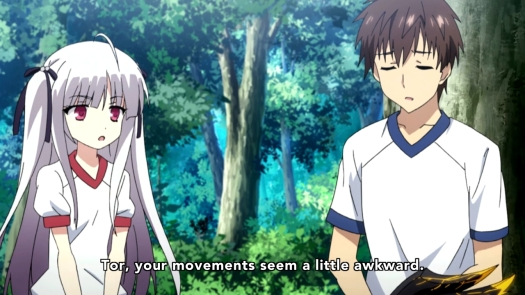 Absolute Duo - 0311