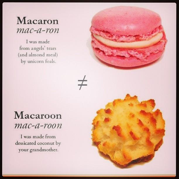 macaron vs macaroon